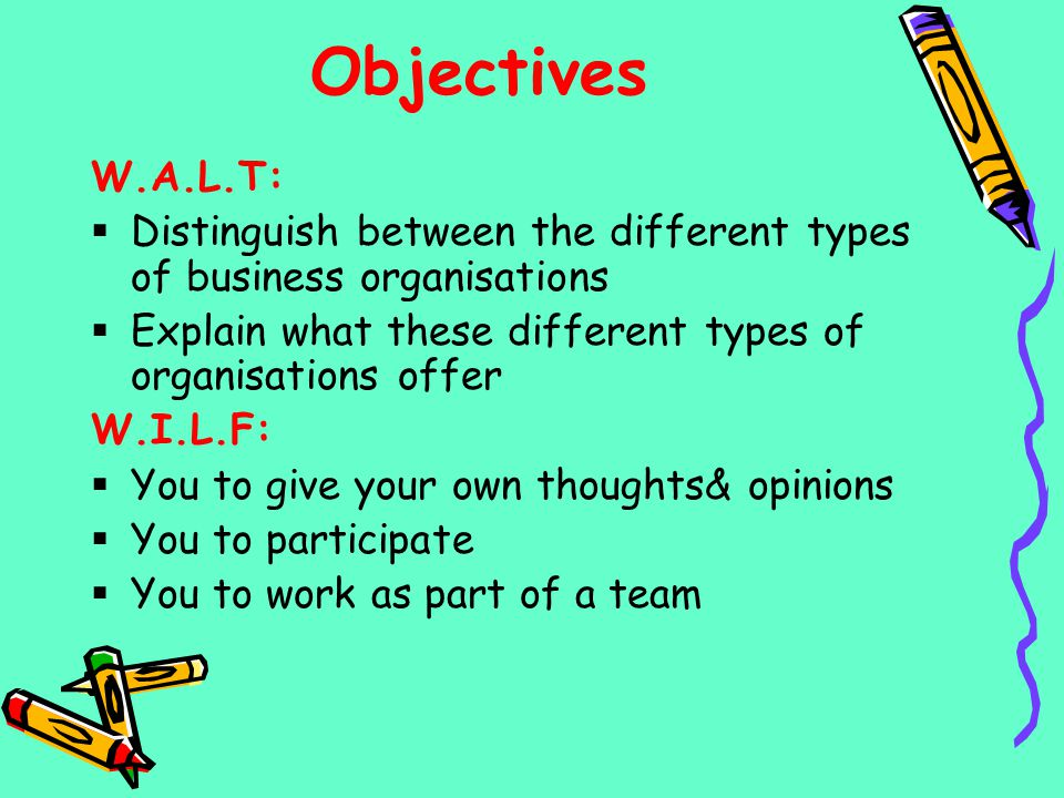 Objectives W.A.L.T: Distinguish between the different types of business organisations. Explain what these different types of organisations offer.