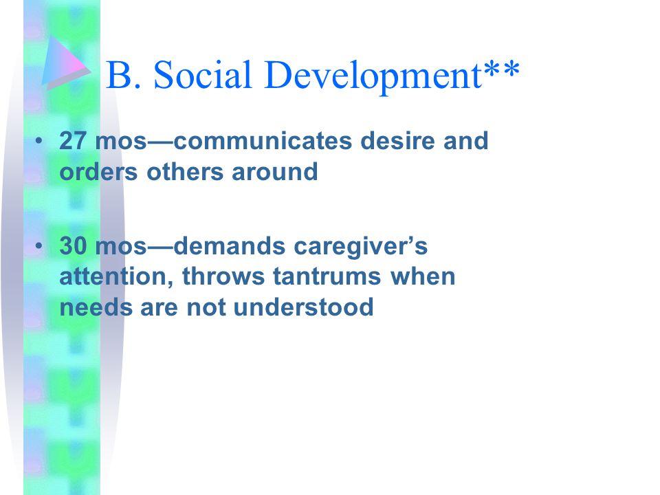 B. Social Development**