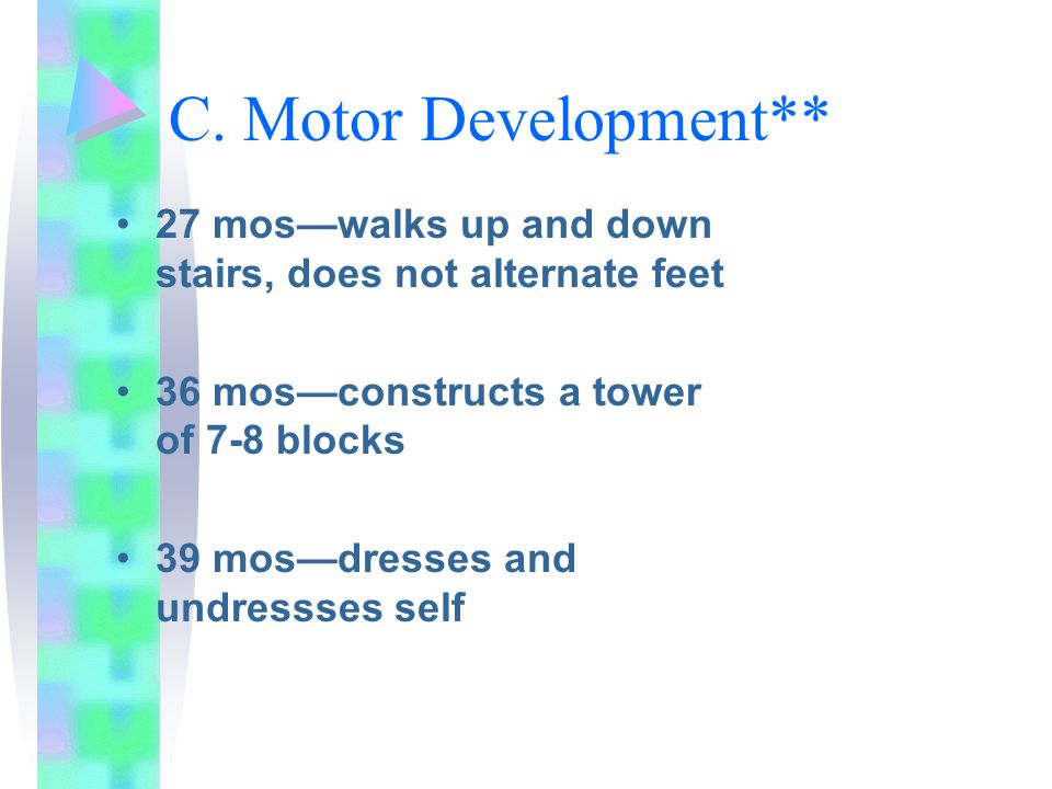 C. Motor Development** 27 mos—walks up and down stairs, does not alternate feet. 36 mos—constructs a tower of 7-8 blocks.