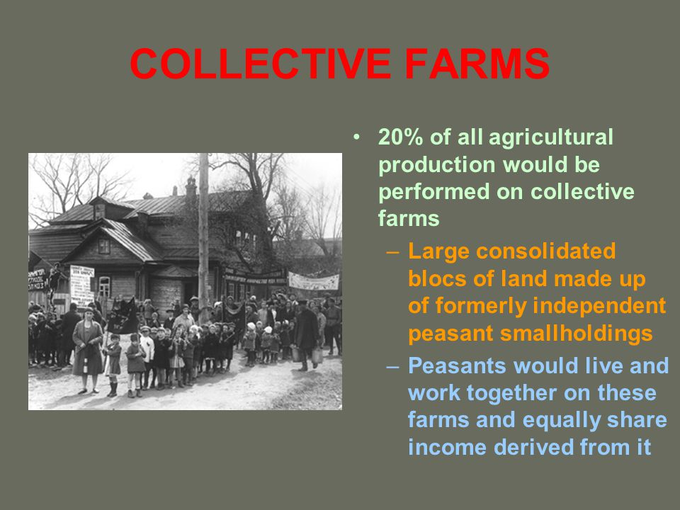 COLLECTIVE FARMS 20% of all agricultural production would be performed on collective farms.
