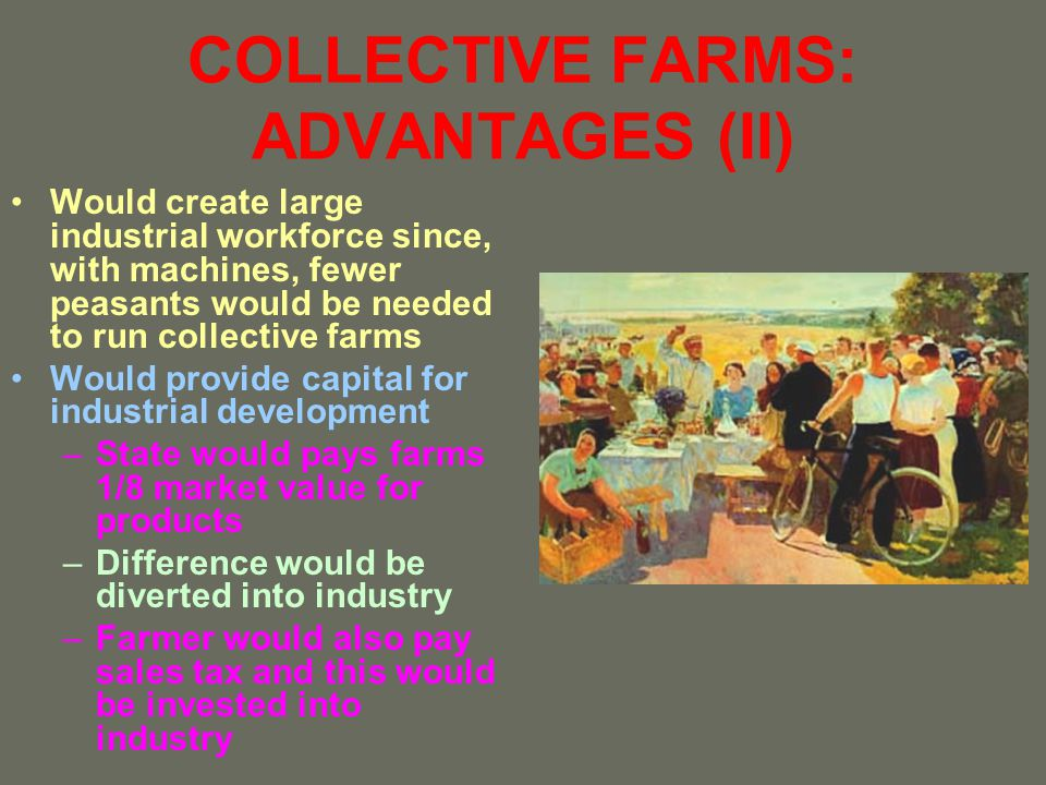 COLLECTIVE FARMS: ADVANTAGES (II)