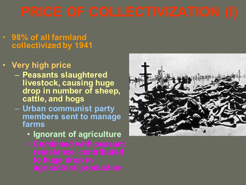 PRICE OF COLLECTIVIZATION (I)