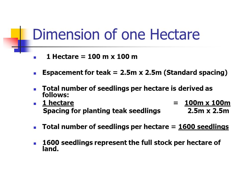 Dimension of one Hectare