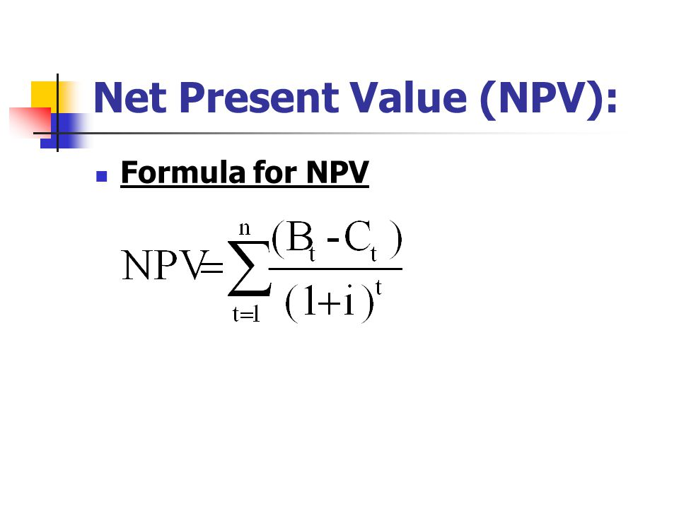 Net Present Value (NPV):
