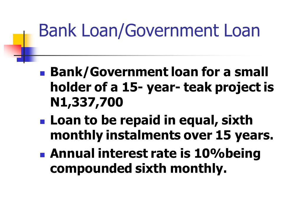 Bank Loan/Government Loan