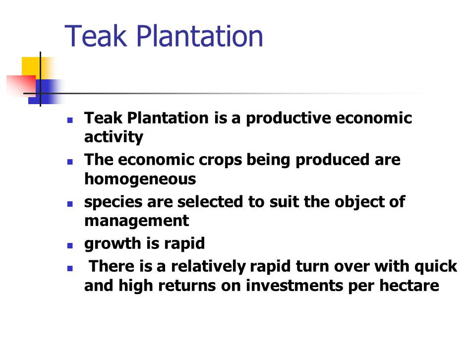 Teak Plantation Teak Plantation is a productive economic activity