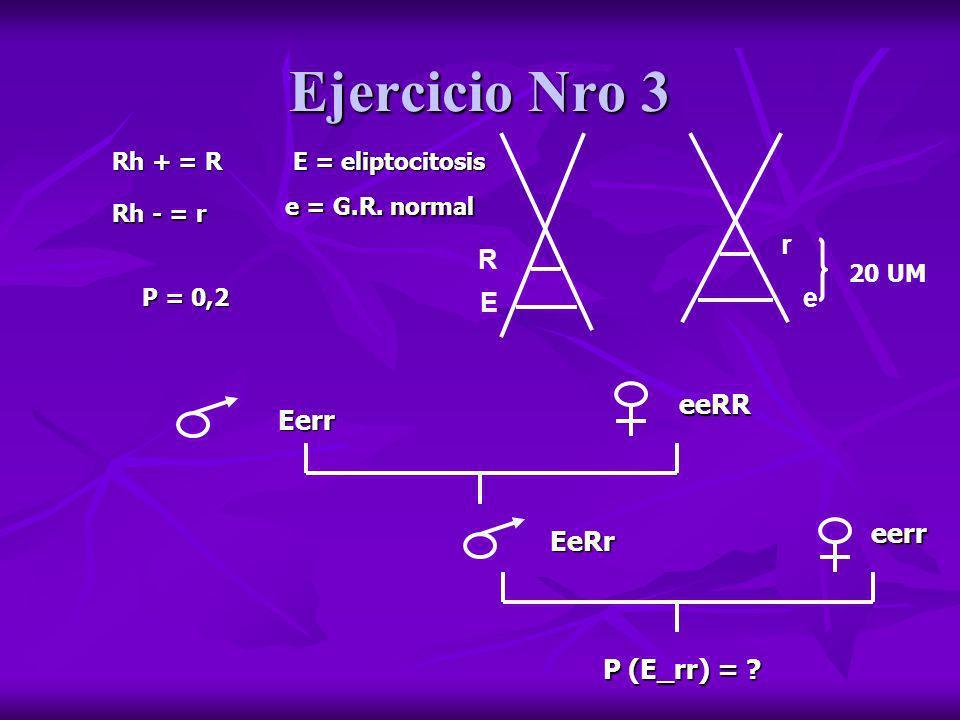 Ejercicio Nro 3 r R e E eeRR Eerr eerr EeRr P (E_rr) = Rh + = R