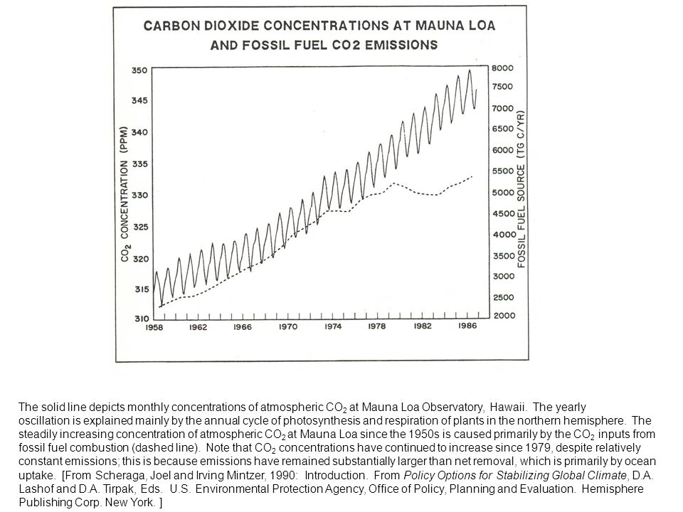 The solid line depicts monthly concentrations of atmospheric CO2 at Mauna Loa Observatory, Hawaii. The yearly