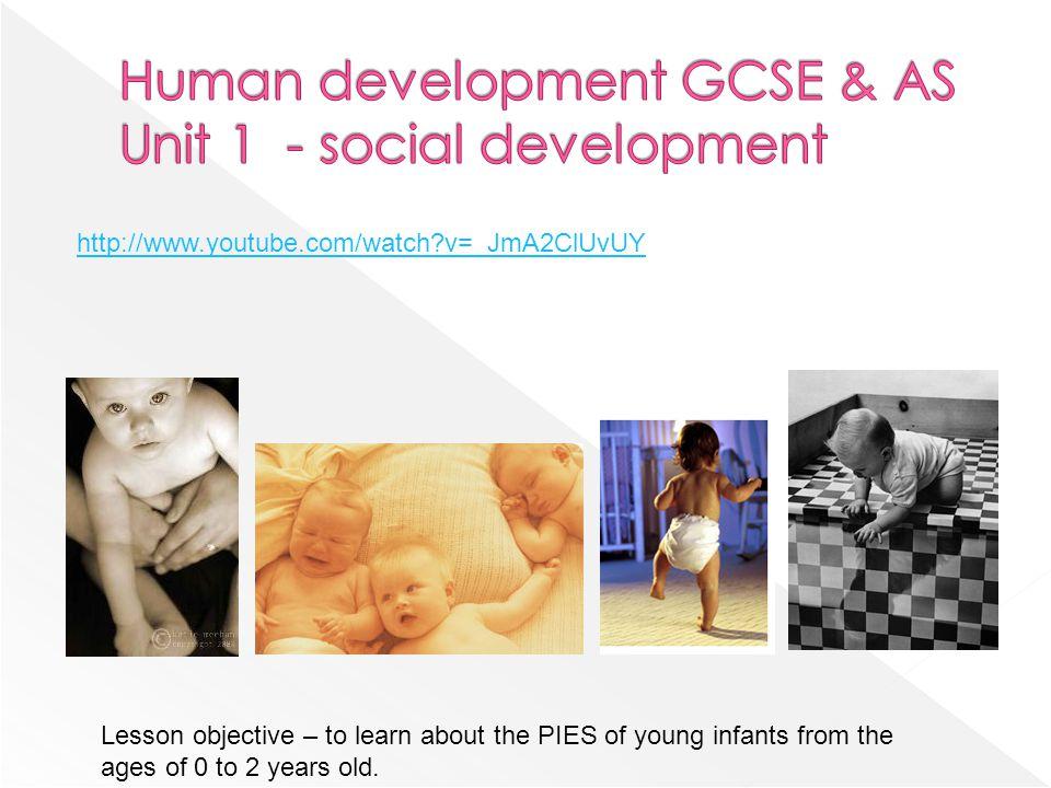 Human development GCSE & AS Unit 1 - social development