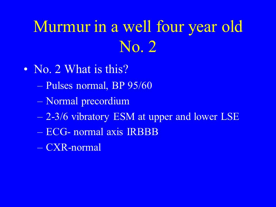 Murmur in a well four year old No. 2