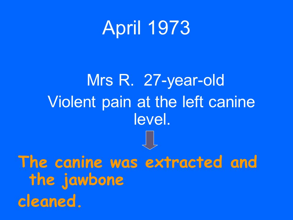 Violent pain at the left canine level.