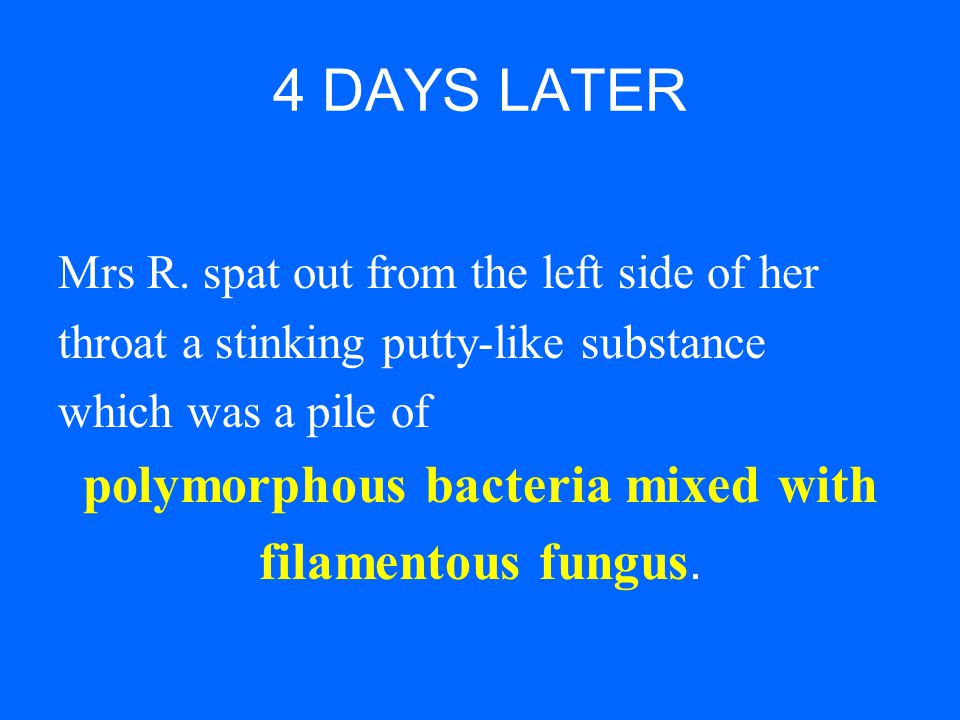 polymorphous bacteria mixed with