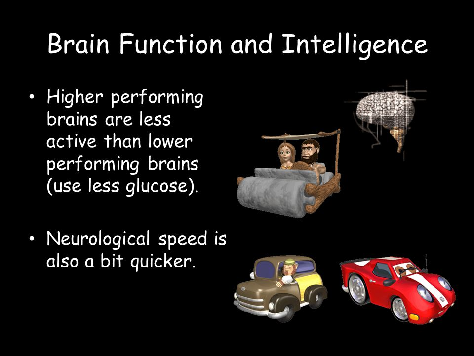 Brain Function and Intelligence