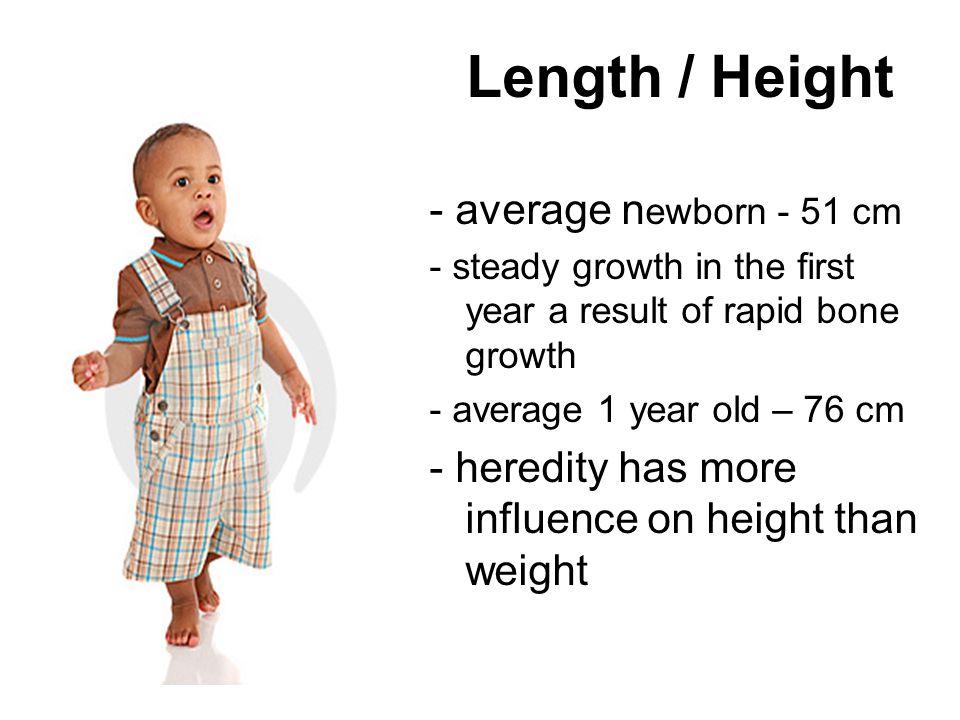 Length / Height - average newborn - 51 cm