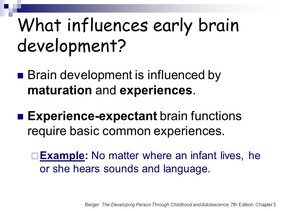 What influences early brain development