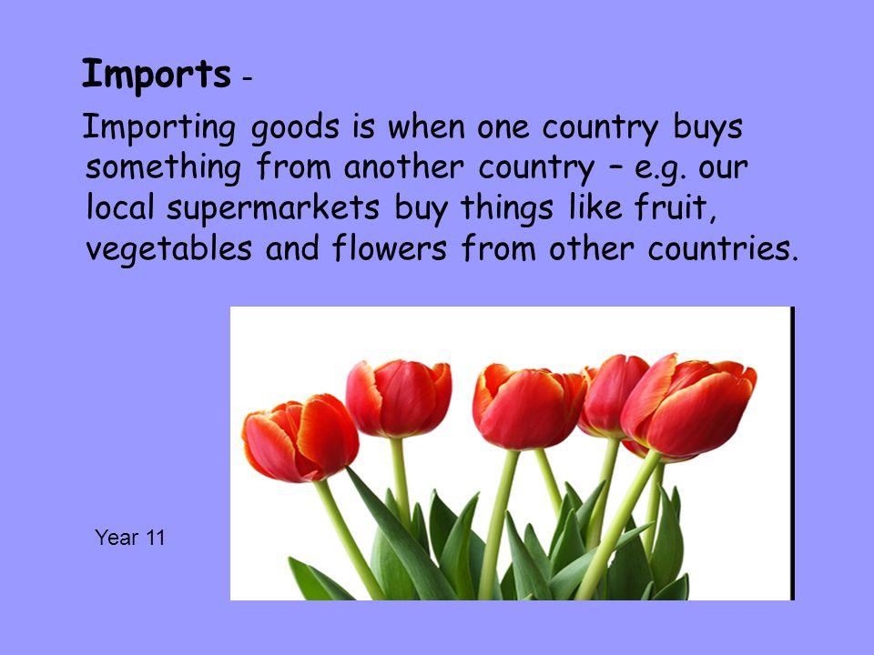 Imports –