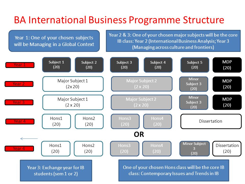 BA International Business Programme Structure
