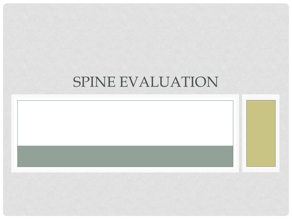 Spine Evaluation