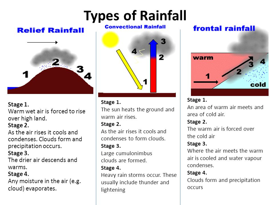 Types of Rainfall Stage 1. Warm wet air is forced to rise
