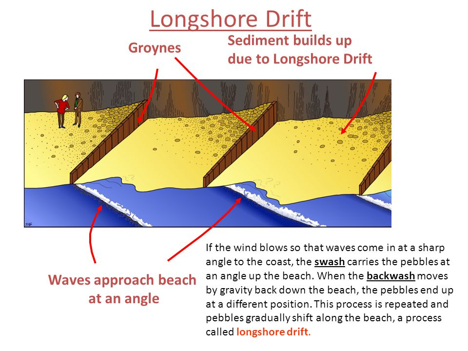 Longshore Drift Sediment builds up Groynes due to Longshore Drift
