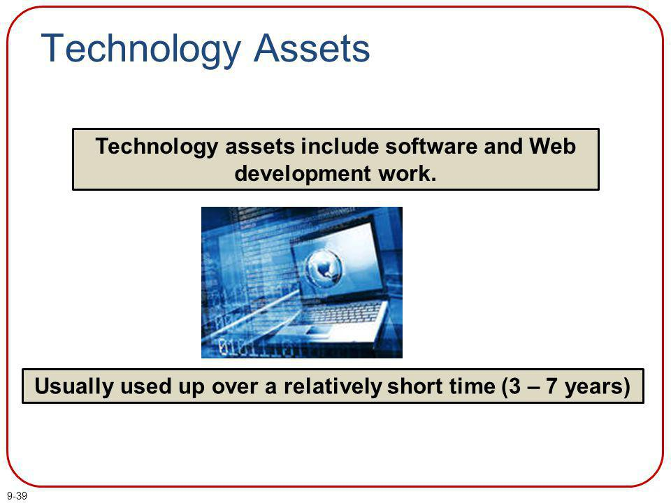 Technology Assets Technology assets include software and Web development work.