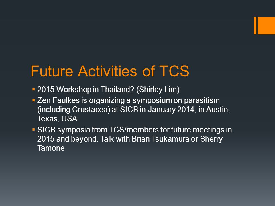 Future Activities of TCS