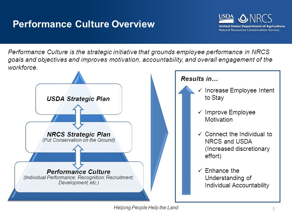 Performance Culture Overview