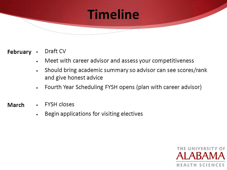 Timeline February Draft CV