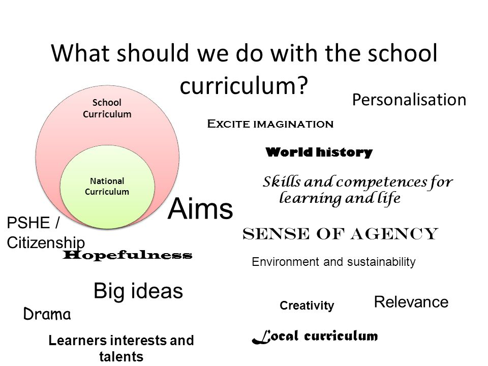 What should we do with the school curriculum