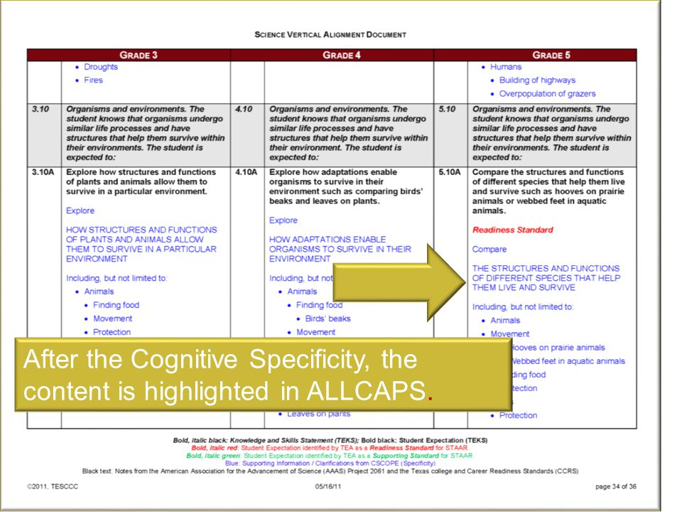 After the Cognitive Specificity, the content is highlighted in ALLCAPS.
