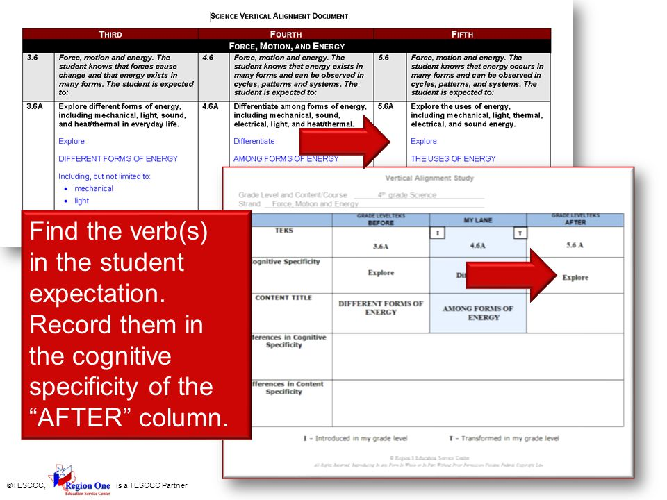 Find the verb(s) in the student expectation.