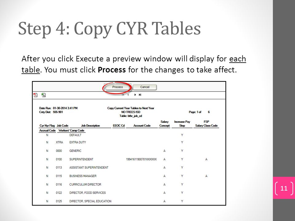 Step 4: Copy CYR Tables After you click Execute a preview window will display for each table. You must click Process for the changes to take affect.