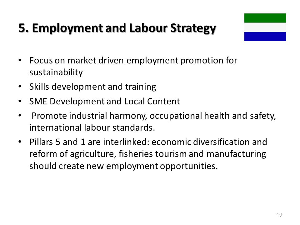 5. Employment and Labour Strategy