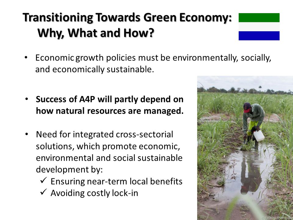 Transitioning Towards Green Economy: Why, What and How