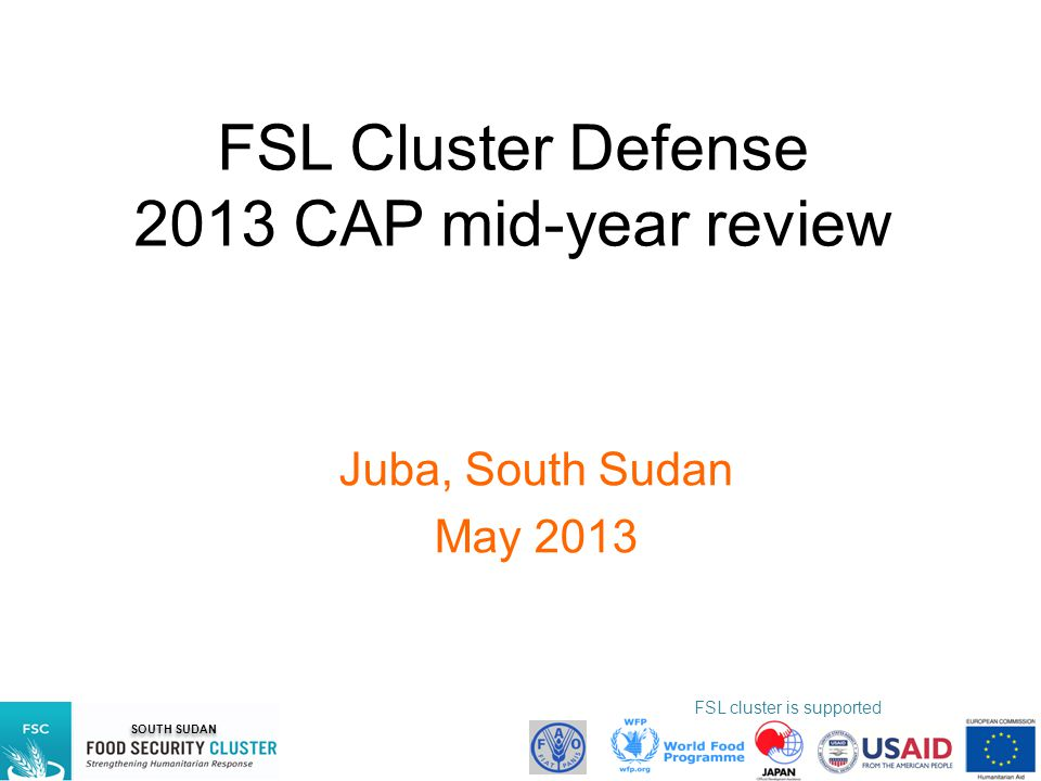 FSL Cluster Defense 2013 CAP mid-year review