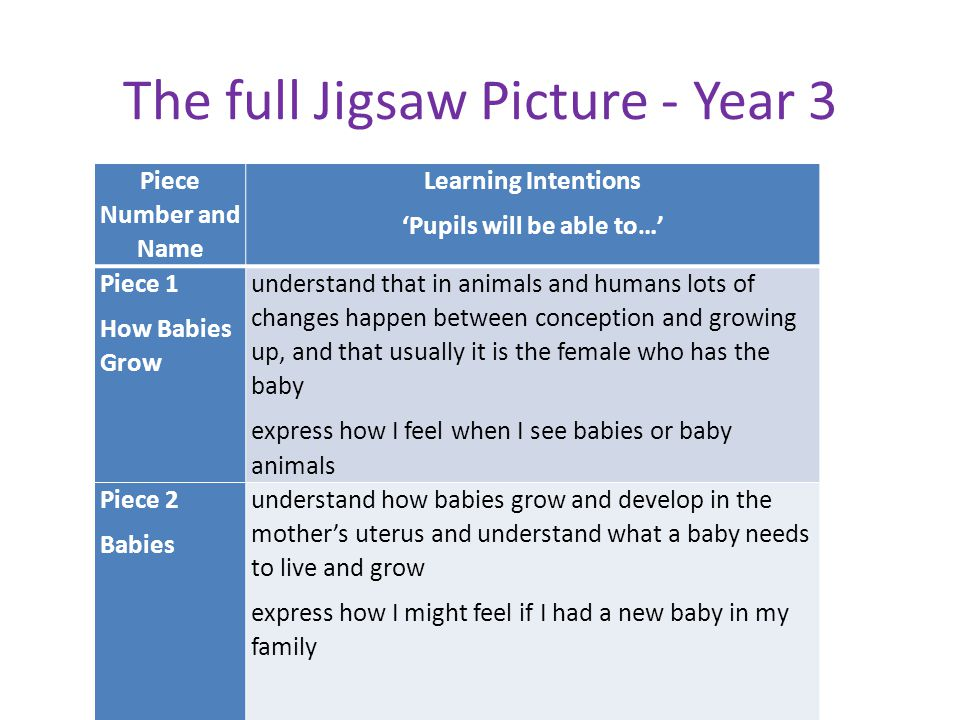 The full Jigsaw Picture - Year 3