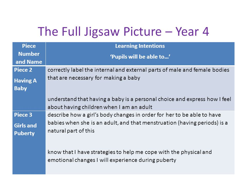 The Full Jigsaw Picture – Year 4