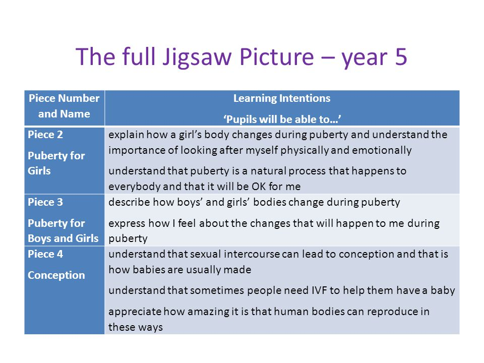 The full Jigsaw Picture – year 5
