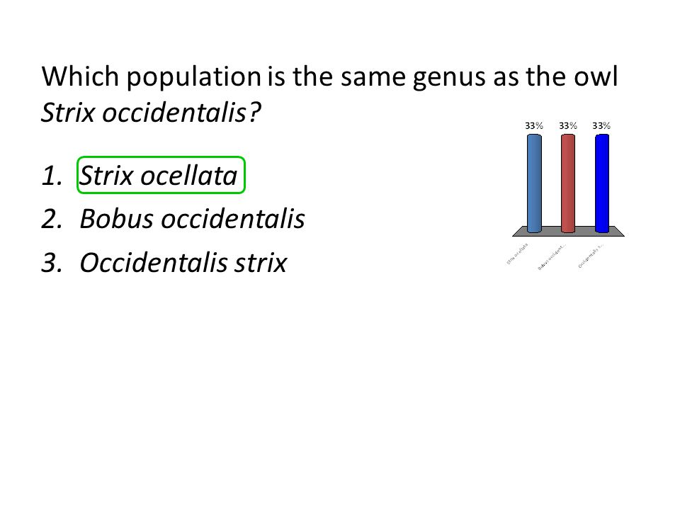 Which population is the same genus as the owl Strix occidentalis