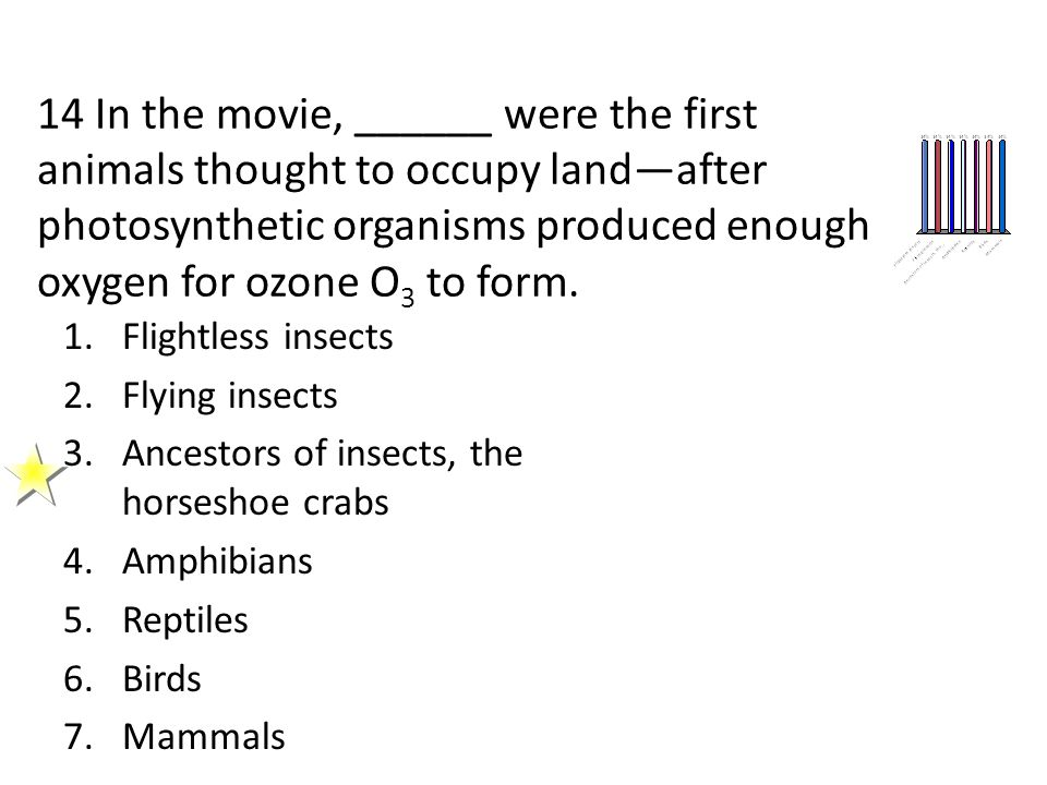 14 In the movie, ______ were the first animals thought to occupy land—after photosynthetic organisms produced enough oxygen for ozone O3 to form.