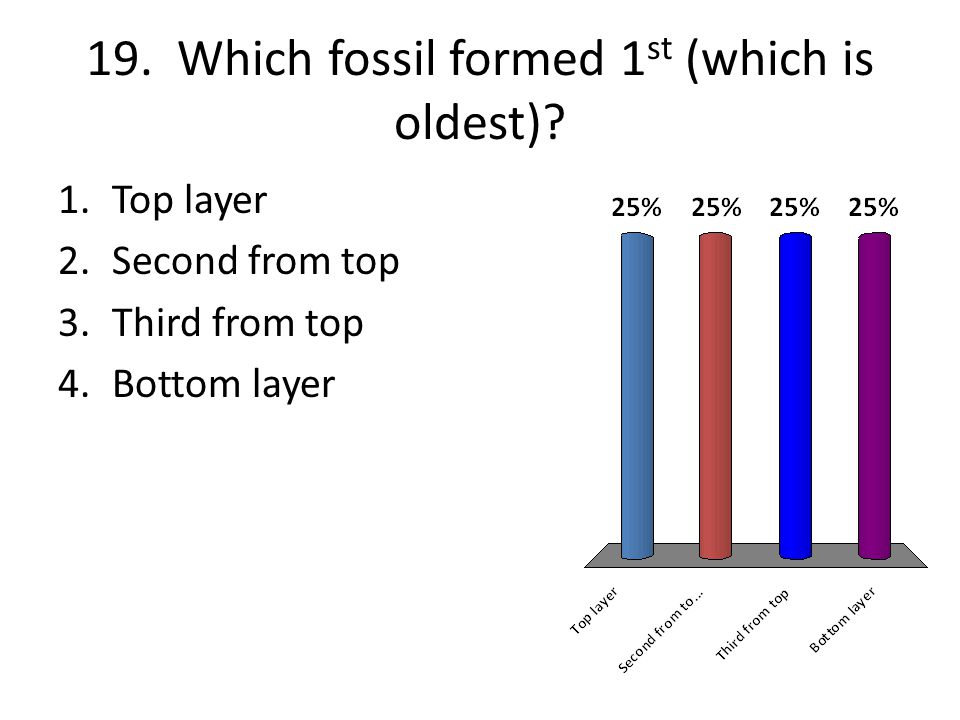 19. Which fossil formed 1st (which is oldest)