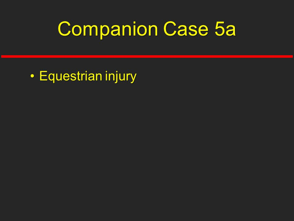 Companion Case 5a Equestrian injury
