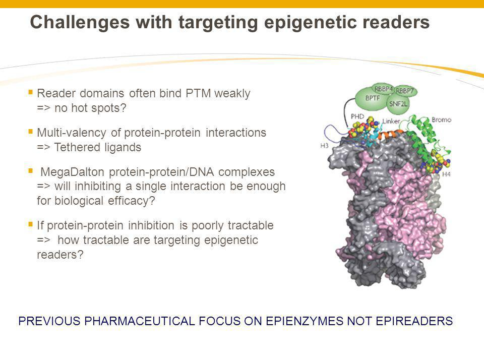 Challenges with targeting epigenetic readers