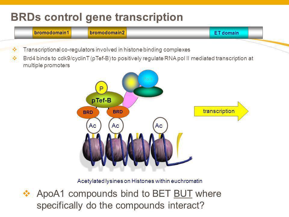 BRDs control gene transcription