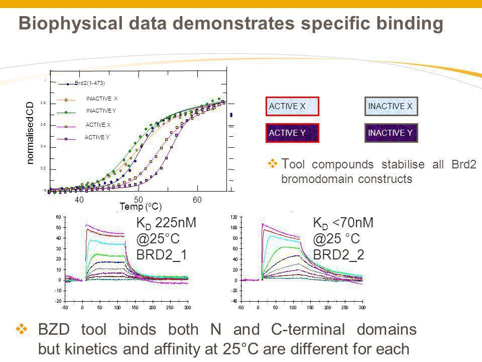 Biophysical data demonstrates specific binding
