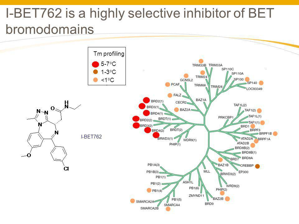 I-BET762 is a highly selective inhibitor of BET bromodomains