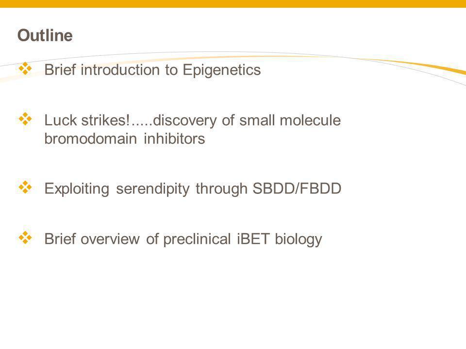 Outline Brief introduction to Epigenetics