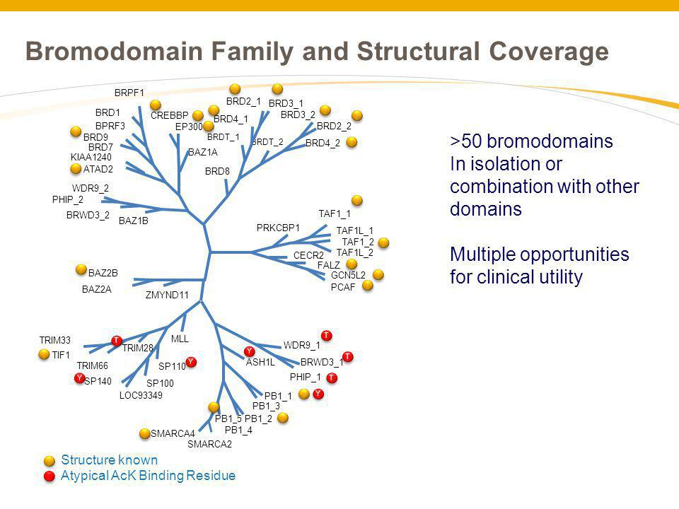 Bromodomain Family and Structural Coverage