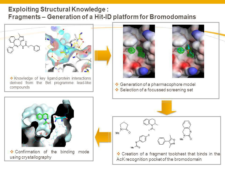 Exploiting Structural Knowledge : Fragments – Generation of a Hit-ID platform for Bromodomains