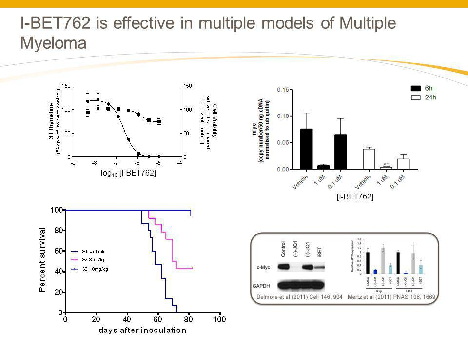I-BET762 is effective in multiple models of Multiple Myeloma